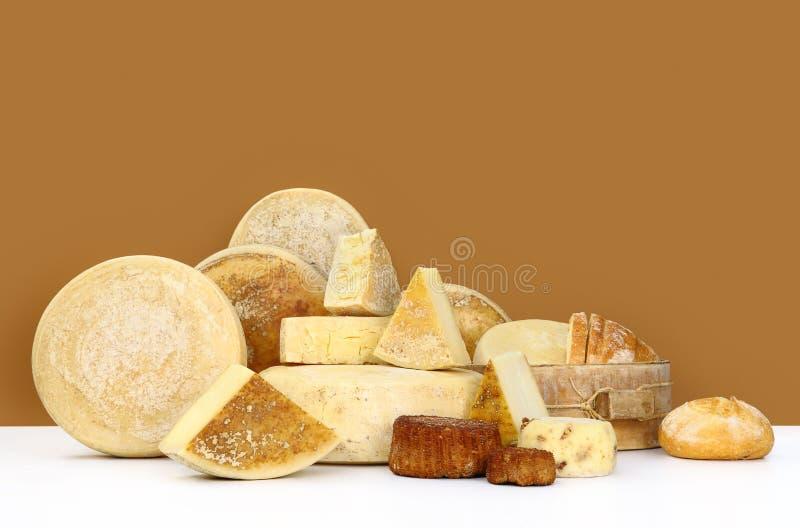 Olika typer av ost med bröd arkivfoton