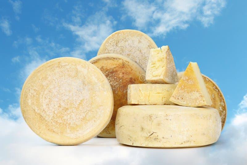Olika typer av ost med bröd royaltyfri foto
