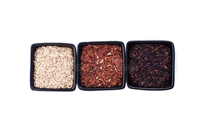 Olika typer av ris fotografering för bildbyråer