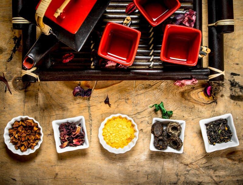 Olika typer av torkat te i kopparna fotografering för bildbyråer