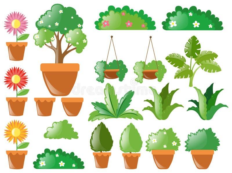 Olika typer av växter royaltyfri illustrationer