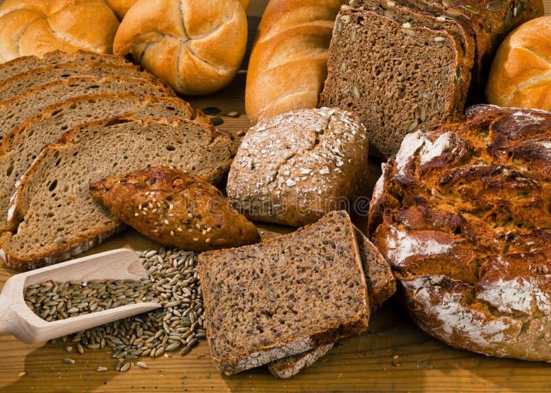 olika typer för bröd royaltyfri foto