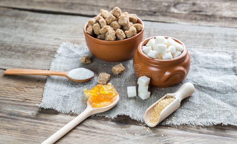 Olika typer och former av socker royaltyfri bild