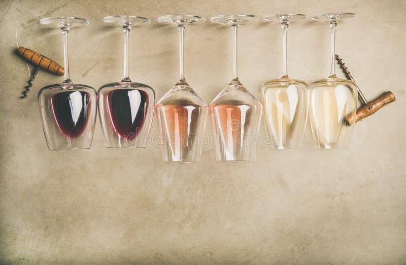Olika viner i exponeringsglas i raden och korkskruv, bästa sikt royaltyfri foto