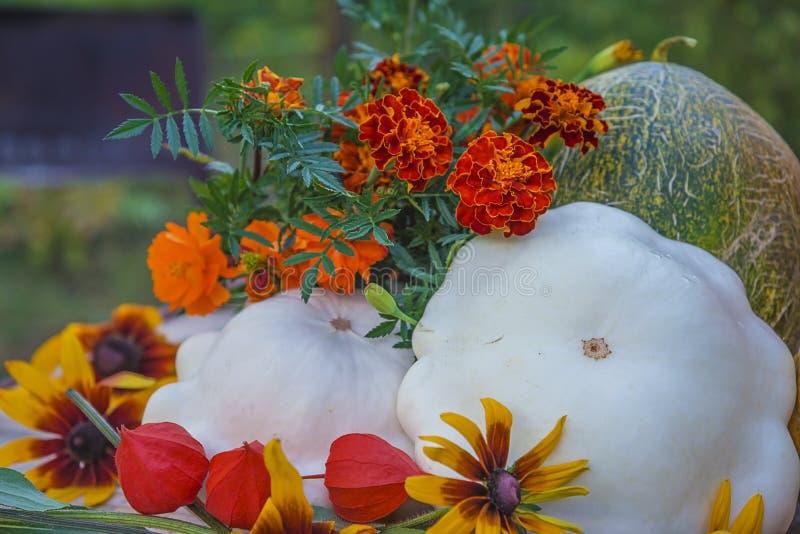 Olikt av höstgrönsaker och gulingblommor arkivfoto