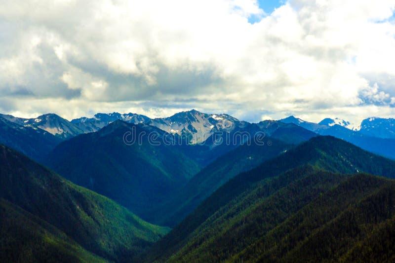 Olimpijski pasmo górskie, Olimpijski park narodowy, Waszyngton, usa obraz stock