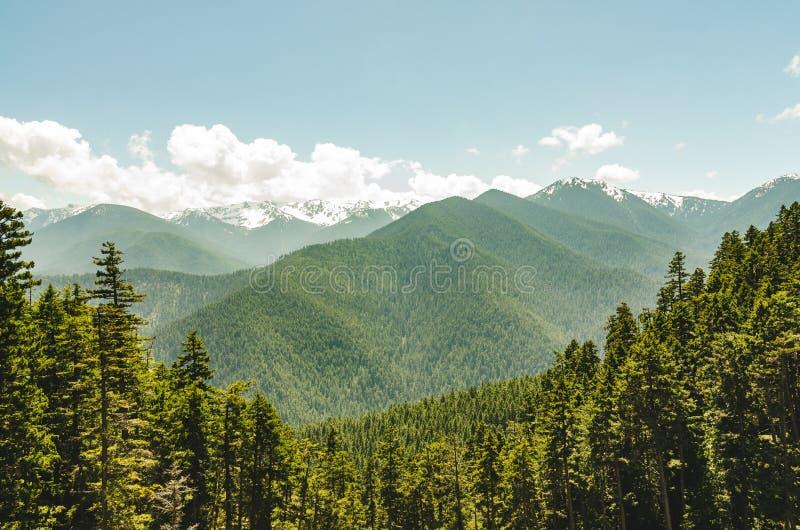Olimpijskiego parka narodowego grani góry Huraganowa strona obrazy royalty free