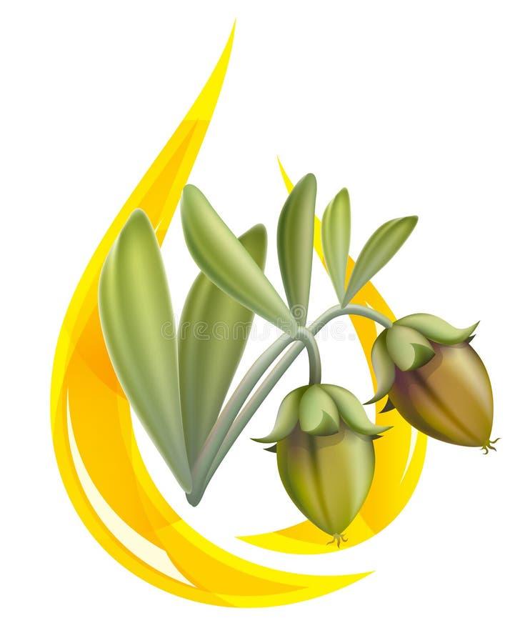 Olio del jojoba. Goccia stilizzata. illustrazione di stock