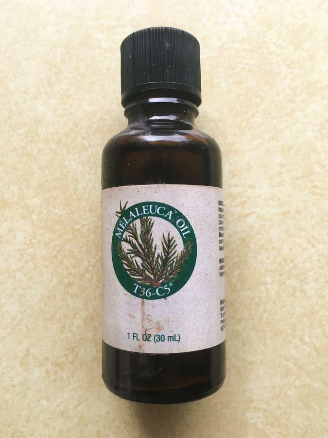 Olio dell'albero del tè di Melaleuca immagini stock libere da diritti