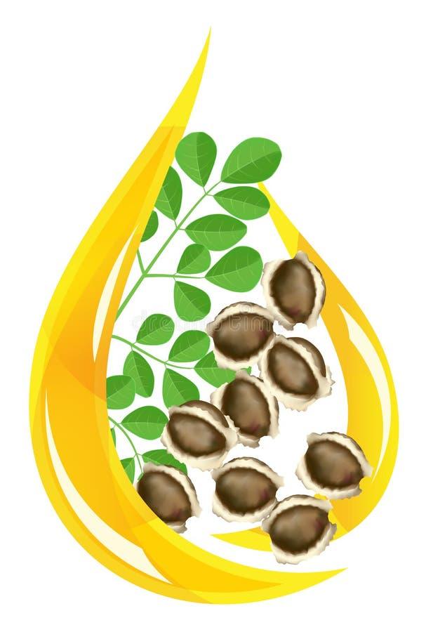Olio della moringa oleifera. Goccia stilizzata. illustrazione di stock
