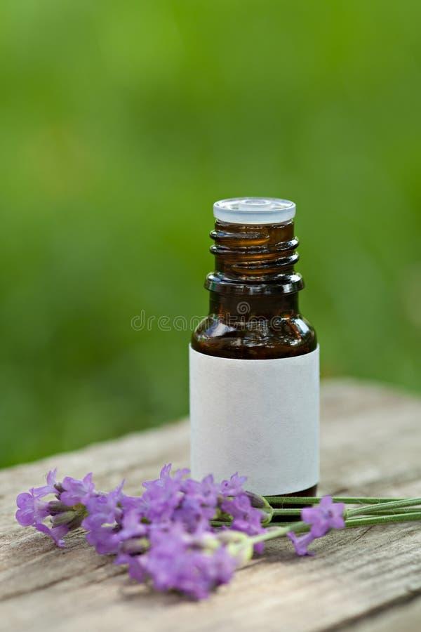Olio di lavanda di Aromatherapy fotografie stock libere da diritti