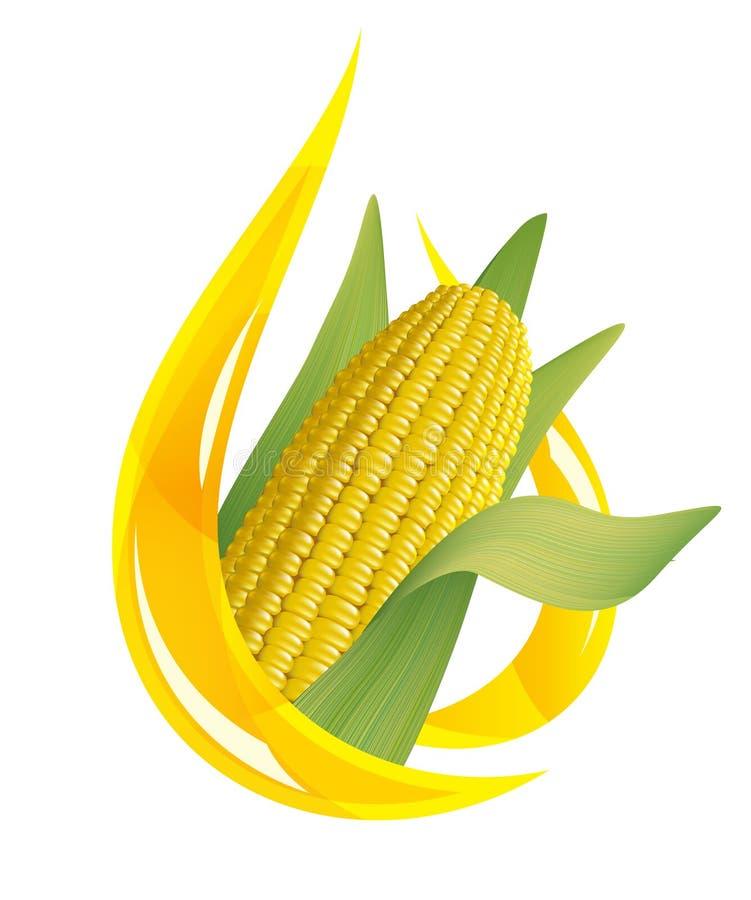Olio di mais. Goccia stilizzata di olio e della pannocchia di granturco. illustrazione vettoriale