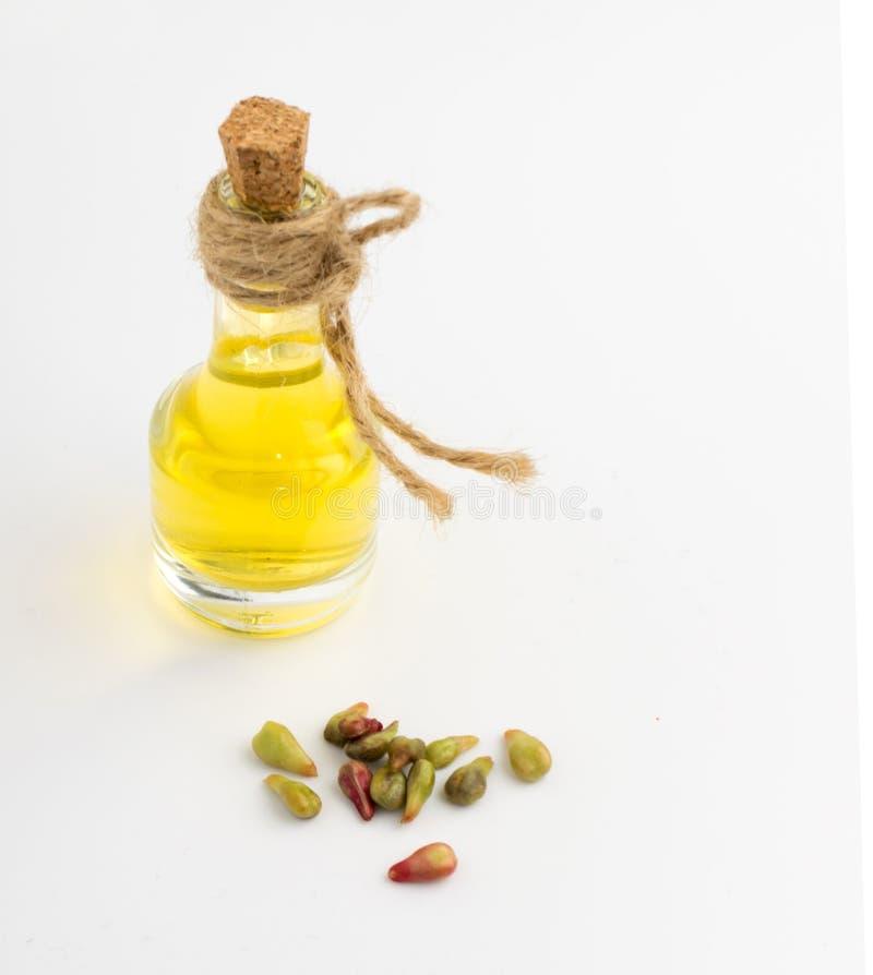 Olio di semi dell'uva fotografia stock libera da diritti