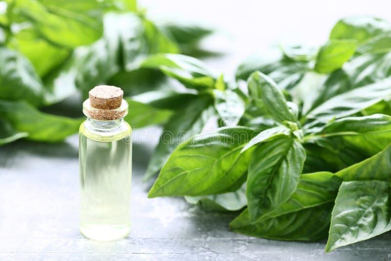 Olio essenziale con le foglie del basilico fotografie stock