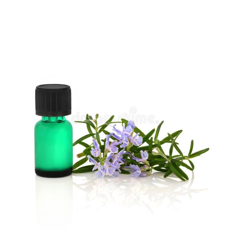 Olio essenziale dell'erba della Rosemary immagine stock libera da diritti