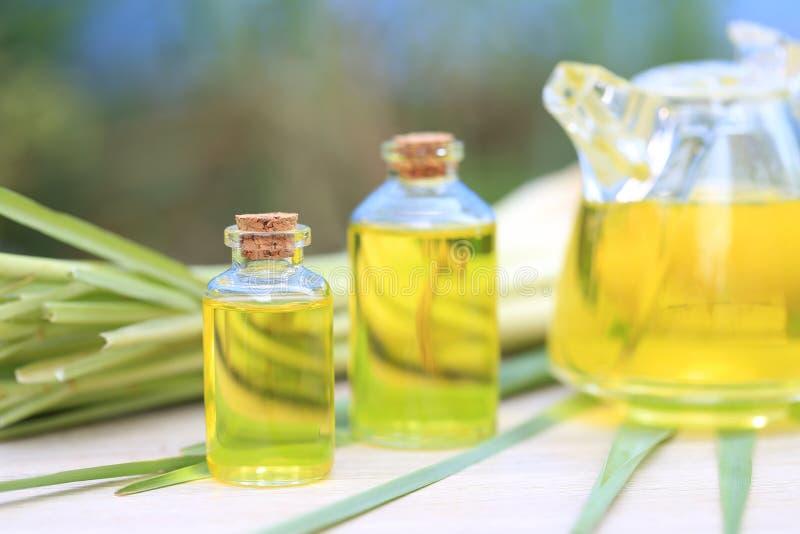 Olio essenziale della citronella in bottiglie di vetro su fondo verde naturale immagine stock libera da diritti