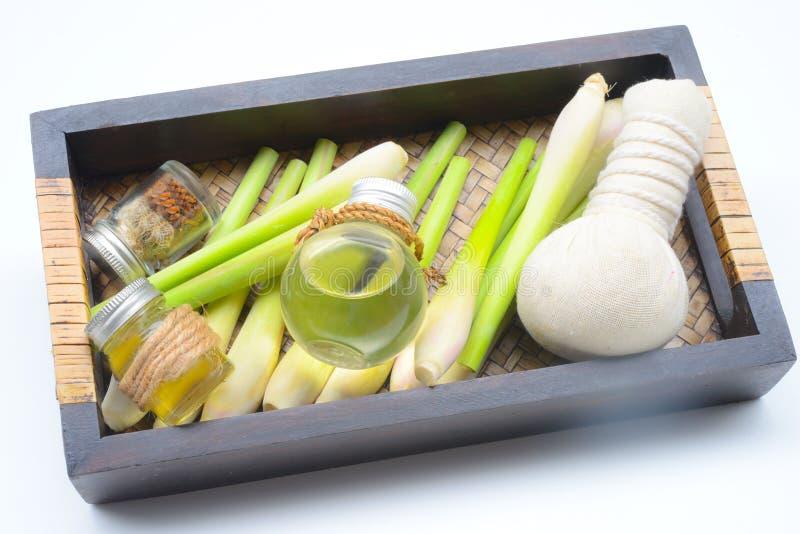 Olio essenziale della citronella con l'aromaterapia immagini stock libere da diritti