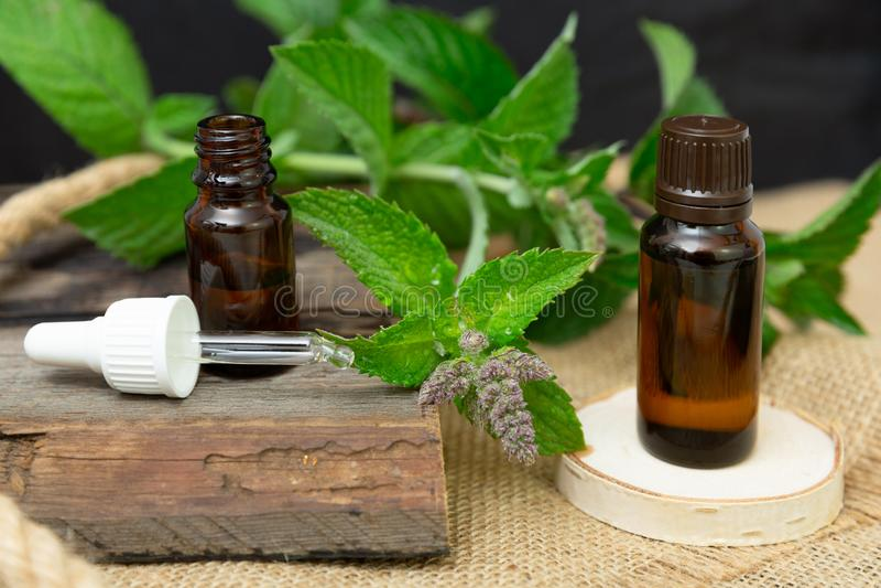 Olio essenziale della menta piperita naturale in una bottiglia di vetro con le foglie di menta fresca su fondo di legno fotografia stock