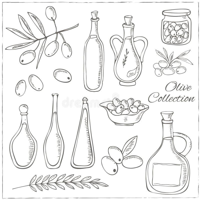 Oliv skissar uppsättningen med trädfilialen och den olje- flaskan stock illustrationer