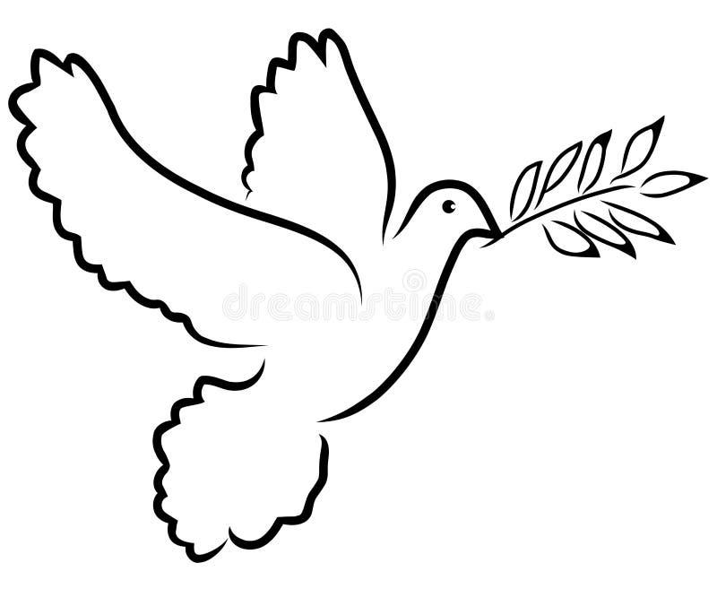 Oliva della colomba di vettore illustrazione di stock