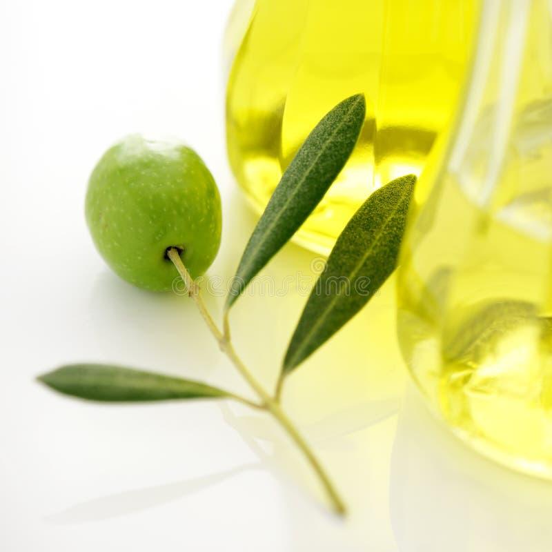 Oliva ed olio immagine stock