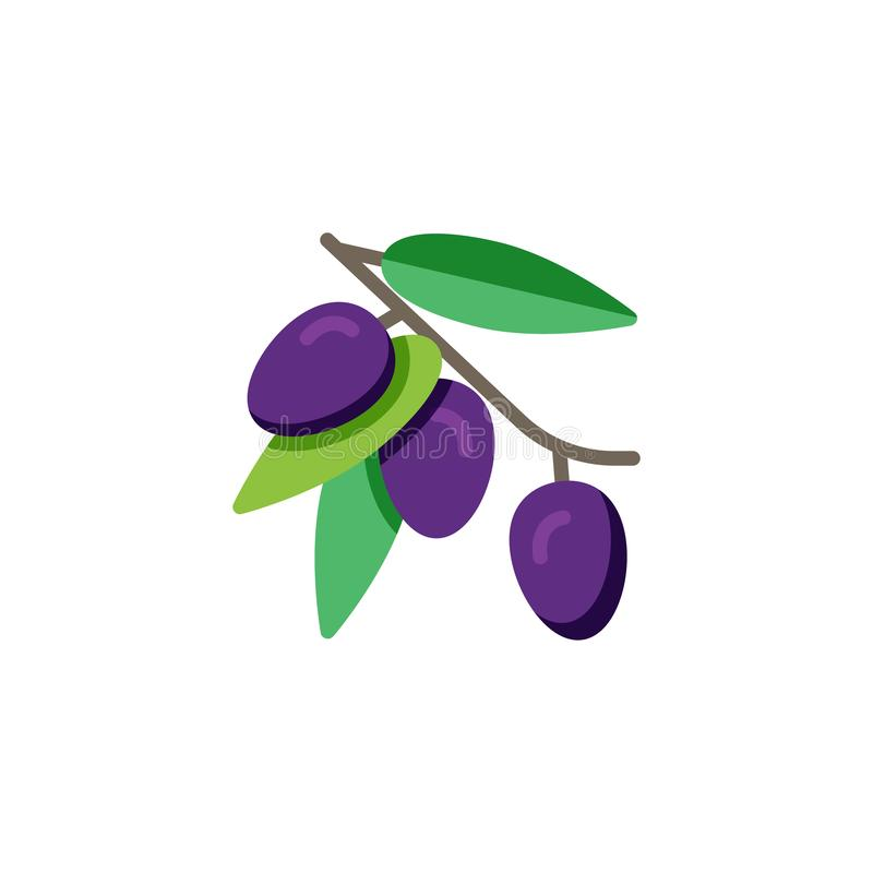 Olive branch with olives fruit flat icon stock illustration