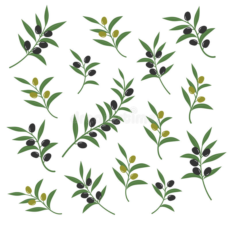 Olive branch set vector illustration. Italian sicilian or greek oil green branches symbols isolated on white background. Collection of branch olive with leaf stock illustration