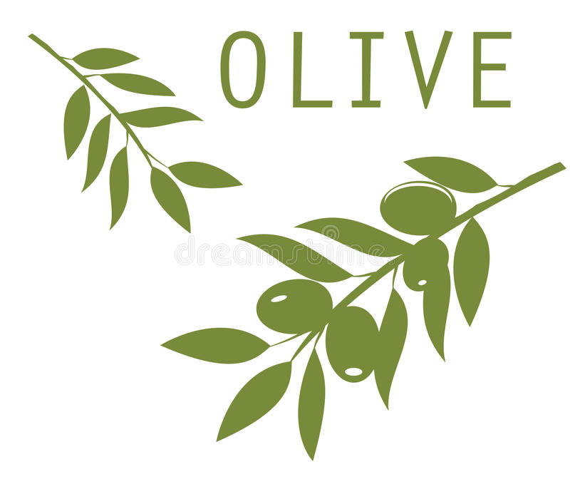 Olive Branches illustration libre de droits