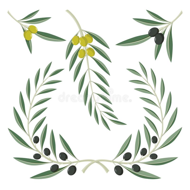 Download Olive branches stock vector. Illustration of trophy, wreath - 30887779