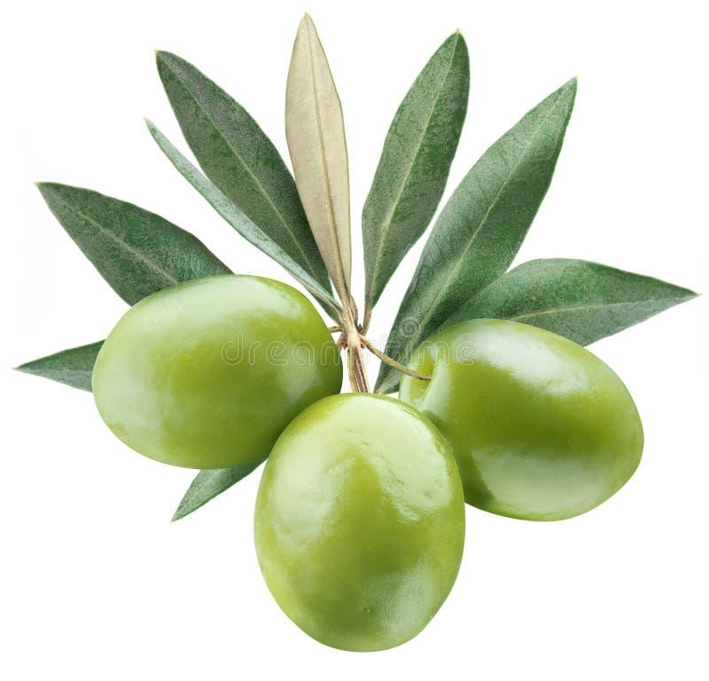 Olive con i fogli fotografia stock libera da diritti