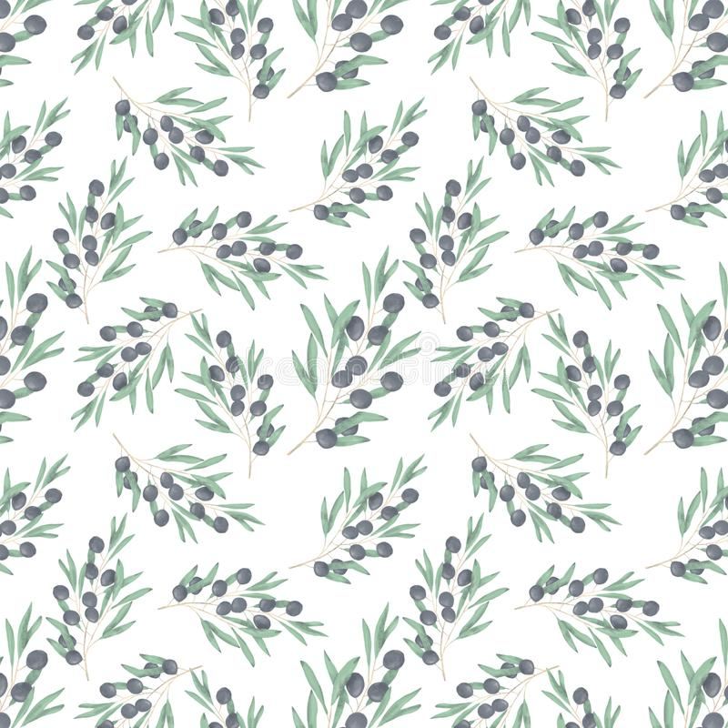 Olive seamlless pattern digital clip art watercolor drawing flowers illustration similar on white background. Olive digital clip art watercolor drawing flowers vector illustration