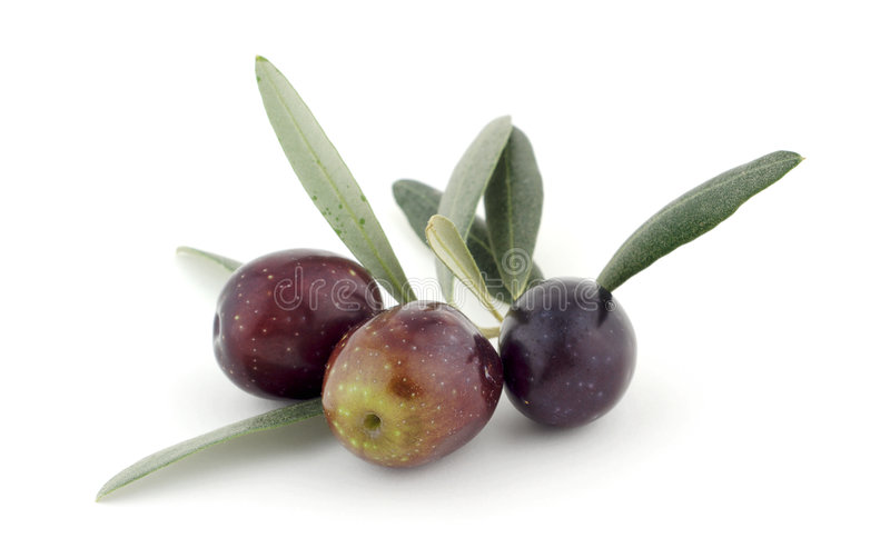 Olive e fogli fotografie stock