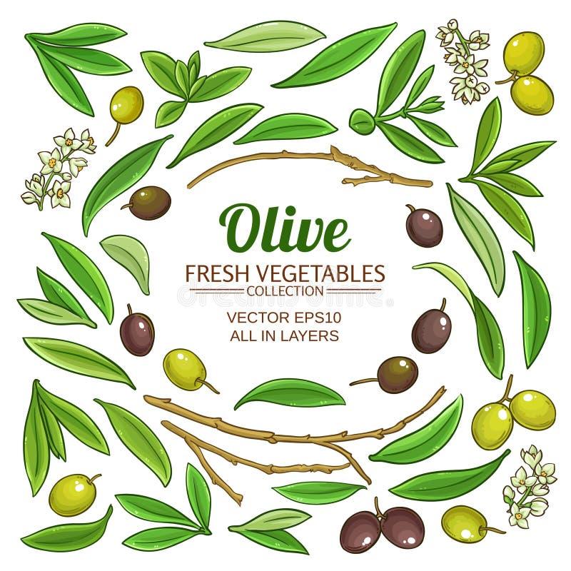 Olive elements vector set. On white background stock illustration