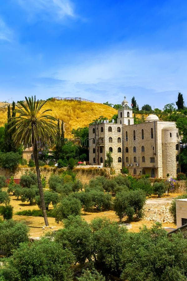 Olive garden with palm trees near the Orthodox Church in Jerusalem royalty free stock image