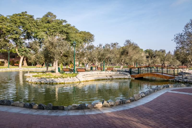 Olive Grove Park y x28; o EL Olivar Forest& x29; en el distrito de San Isidro - Lima, Perú imagen de archivo
