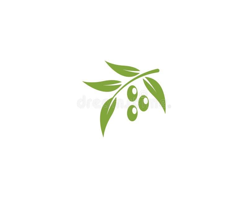 Olive Logo Template ilustração royalty free