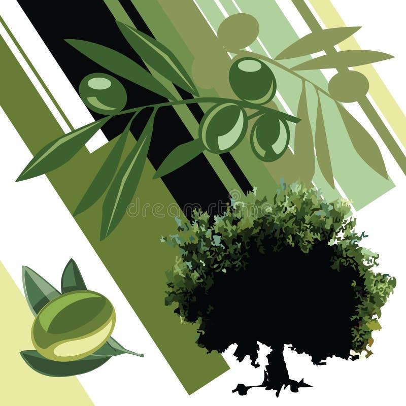 Olive Oil. Salad, Bio Food