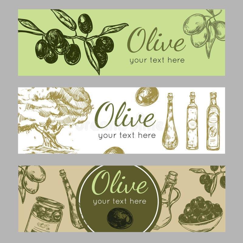 Olive Oil Banner Set dibujada mano libre illustration