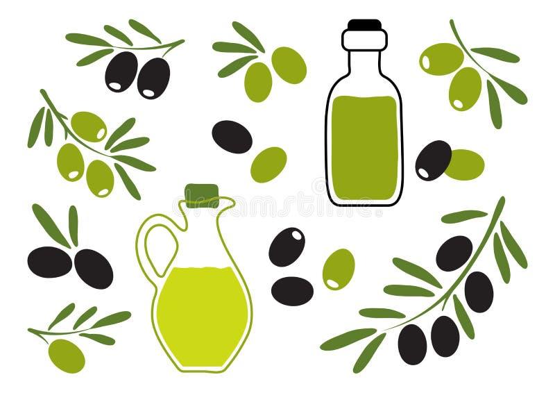Olive oil with black and green olives, branch olives. Hand drawn. Vector. Illustration vector illustration