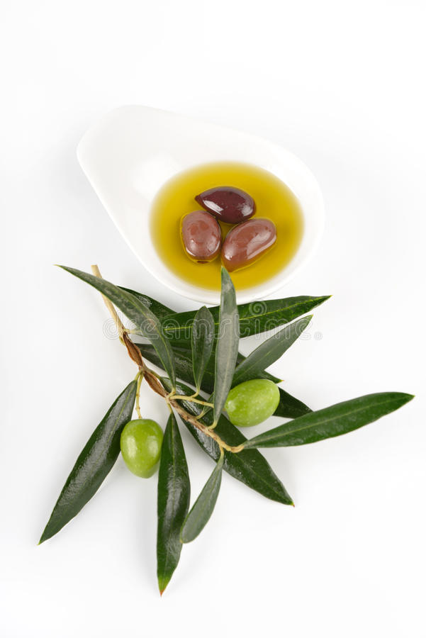 Olive oil and olive branch stock image