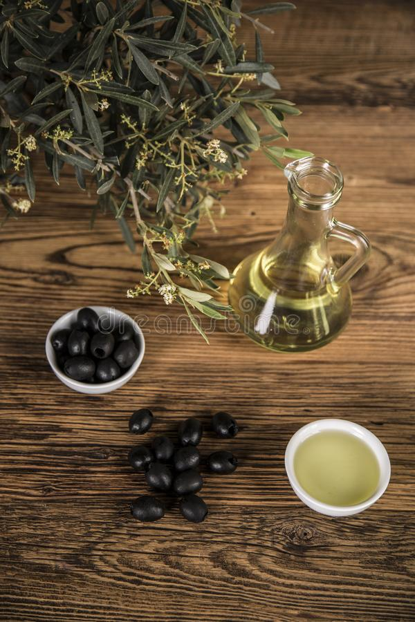 Olive oil and olive tree and black olives and bottles with olive on a wooden table.  royalty free stock image