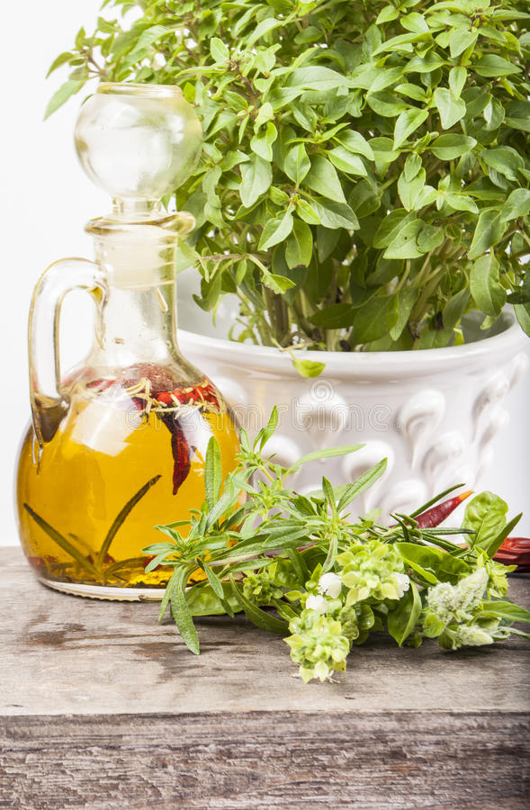 Olive oil and herb pot on wood royalty free stock image