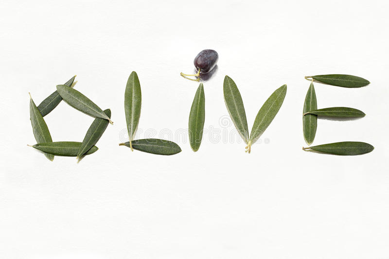 Download Olive And Olive Letters With Leaves Stock Image - Image: 16547461