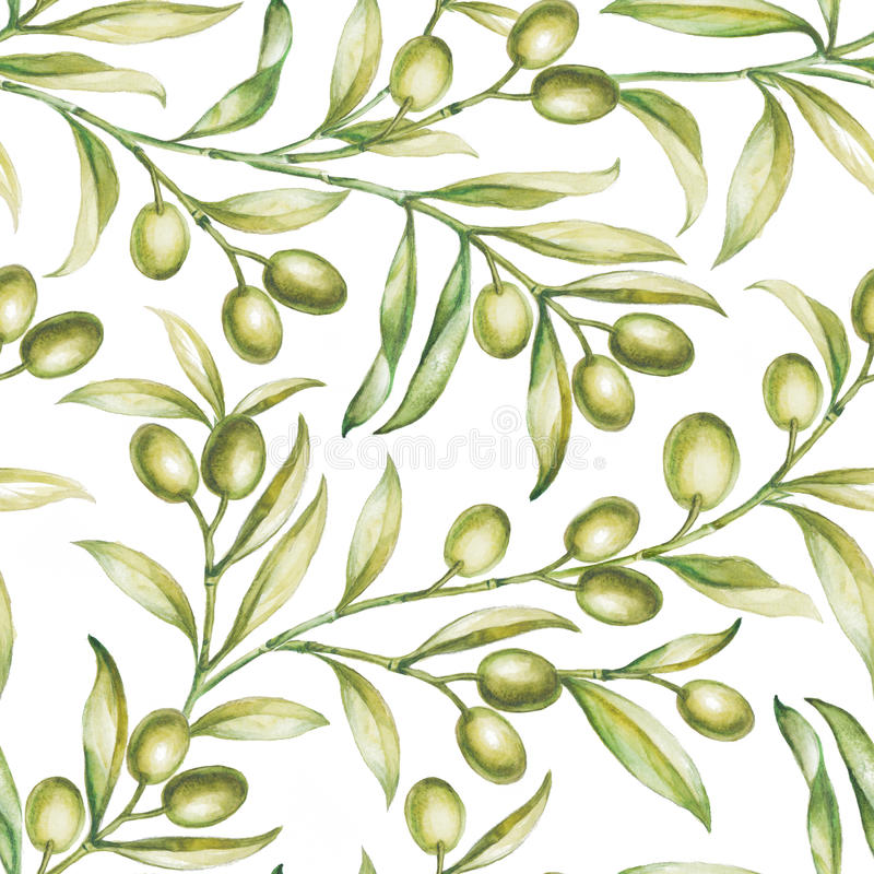 Olive sans couture illustration libre de droits