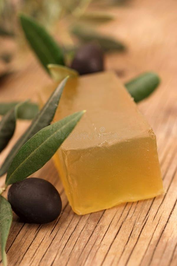 Download Olive soap stock photo. Image of handmade, leaf, plant - 5873720