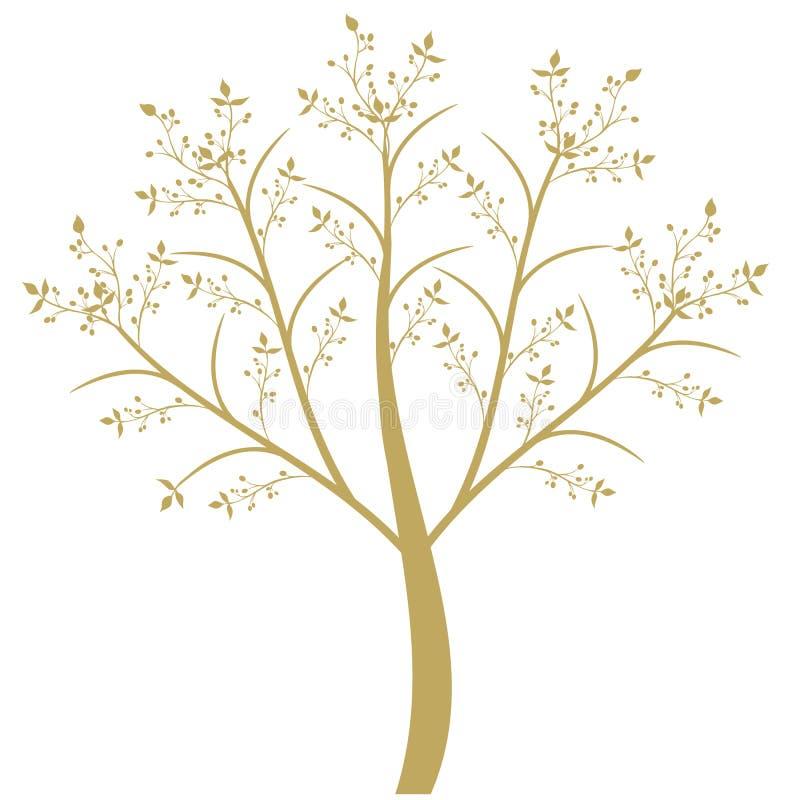 Olive Tree royalty free illustration
