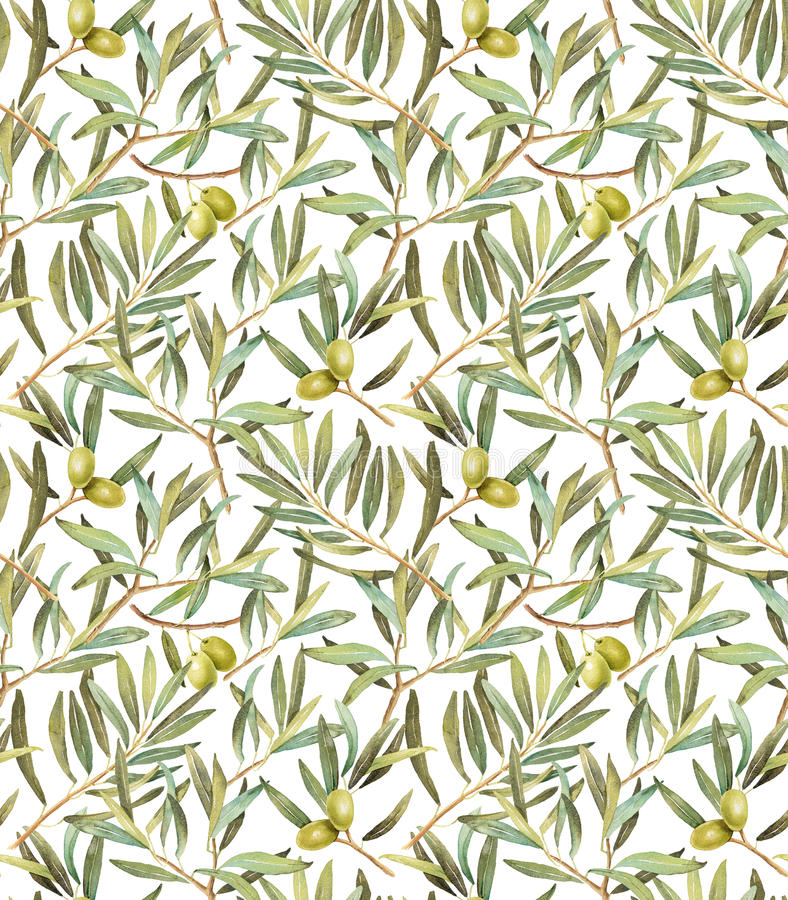 Olive tree leaves seamless pattern royalty free illustration