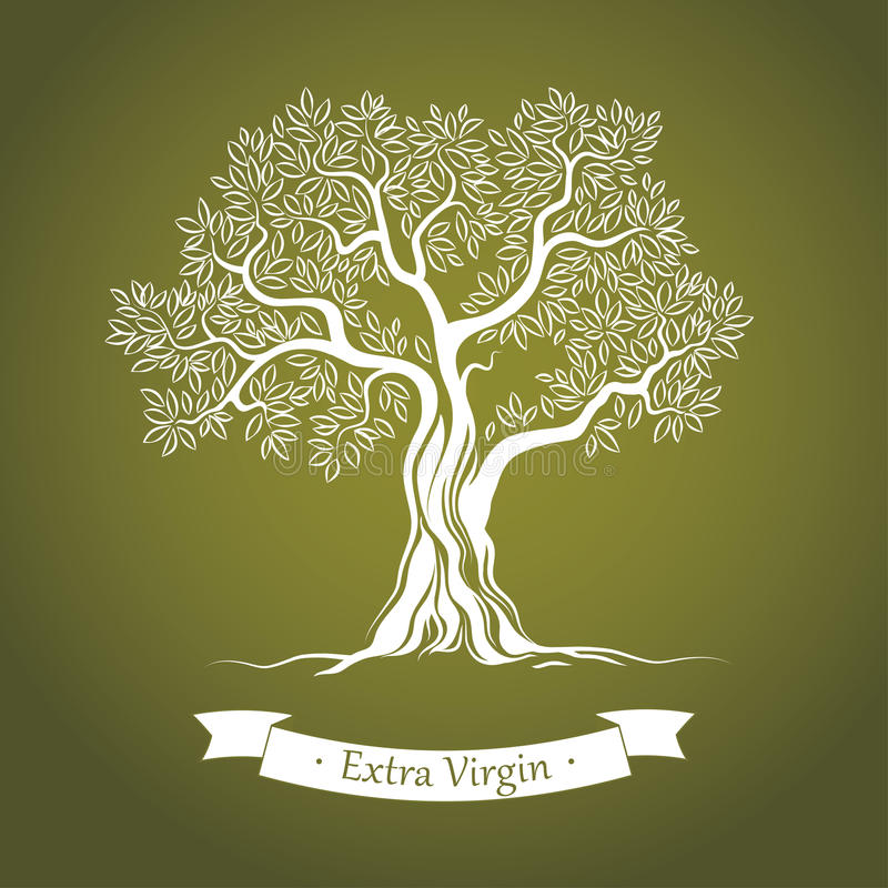 Free Olive Tree. Olive Oil. Vector Olive Tree.For Labe Stock Image - 36086821