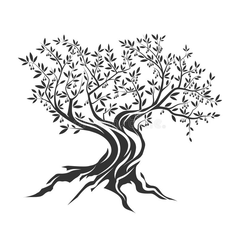 Olive tree silhouette icon isolated royalty free illustration