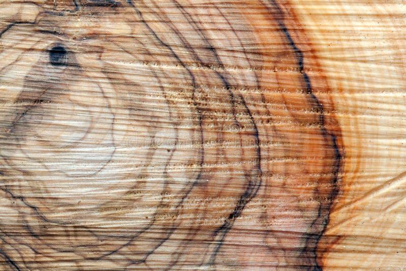 Olive wood royalty free stock photos